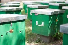 Κιβώτια κράτησης μελισσών Στοκ Εικόνες