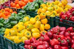Κιβώτια με τα ζωηρόχρωμα πιπέρια. Στοκ εικόνα με δικαίωμα ελεύθερης χρήσης