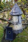 κιβώτια πουλιών στοκ εικόνες