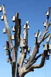 κιβώτια πουλιών Στοκ Φωτογραφίες