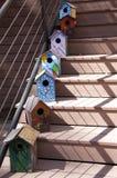 Κιβώτια πουλιών Στοκ εικόνα με δικαίωμα ελεύθερης χρήσης
