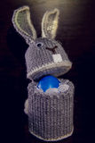 Κιβώτιο λαγουδάκι Πάσχας για τα αυγά συσκευασίας Στοκ Εικόνες