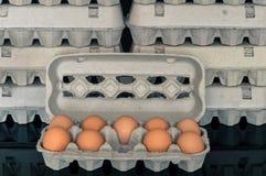 Κιβώτιο αυγών με εννέα οργανικά αυγά κοτόπουλου μέσα Στοκ Εικόνες