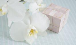 Κιβώτιο δώρων για τις διακοσμήσεις με ένα λουλούδι ορχιδεών Στοκ Εικόνες