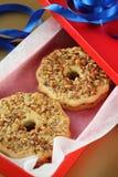 Κιβώτιο δώρων μπισκότων Στοκ φωτογραφία με δικαίωμα ελεύθερης χρήσης