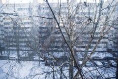 κιβώτιο κλάδων Στοκ εικόνα με δικαίωμα ελεύθερης χρήσης
