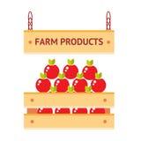 Κιβώτιο μήλων αγροτικών προϊόντων Στοκ Φωτογραφίες