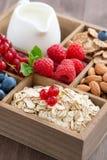 Κιβώτιο με τα στοιχεία προγευμάτων - oatmeal, muesli, καρύδια, μούρα Στοκ Εικόνες
