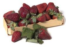 Κιβώτιο με τις ακατέργαστες φράουλες Στοκ Φωτογραφίες