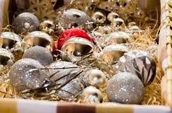 Κιβώτιο με τους βολβούς Χριστουγέννων Στοκ φωτογραφίες με δικαίωμα ελεύθερης χρήσης