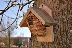 κιβώτιο πουλιών Στοκ Εικόνα