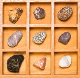 Κιβώτιο σκιών με τη συλλογή των βράχων Στοκ εικόνες με δικαίωμα ελεύθερης χρήσης