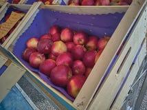 Κιβώτιο της Apple στην αγορά Στοκ Εικόνες