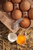 Κιβώτιο των φρέσκων αγροτικών αυγών με έναν λέκιθο αυγών Στοκ εικόνες με δικαίωμα ελεύθερης χρήσης