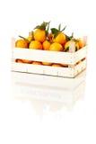 Κιβώτιο των φρέσκων πορτοκαλιών Στοκ φωτογραφία με δικαίωμα ελεύθερης χρήσης