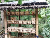 Κιβώτιο φωλιών στη ζωική ιδέα μελισσών στοκ εικόνα με δικαίωμα ελεύθερης χρήσης