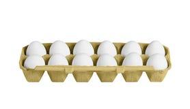Κιβώτιο χαρτοκιβωτίων με τα αυγά που απομονώνονται Στοκ Εικόνα