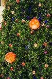 Κιβώτιο δώρων και δέντρο chrismas Στοκ εικόνες με δικαίωμα ελεύθερης χρήσης