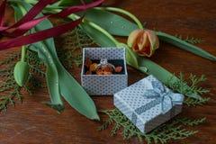 Κιβώτιο δώρων με τις τουλίπες και τα χορτάρια και δαχτυλίδια αρραβώνων στο ξύλο wa Στοκ φωτογραφίες με δικαίωμα ελεύθερης χρήσης