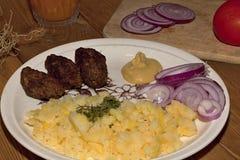 Κιμάς χοιρινού κρέατος Στοκ εικόνα με δικαίωμα ελεύθερης χρήσης