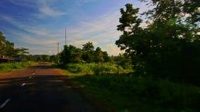 Κινήσεις καμερών κατά μήκος του σκιερού ηλιόλουστου δρόμου μεταξύ του αγροτικού τοπίου απόθεμα βίντεο