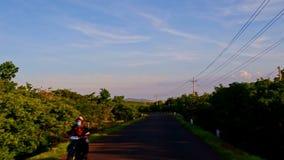 Κινήσεις καμερών κατά μήκος του σκιερού δρόμου μεταξύ του πράσινου countryscape απόθεμα βίντεο