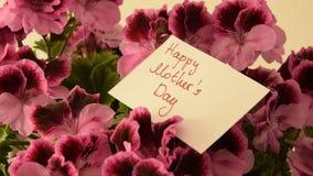 Κινήσεις καμερών κατά μήκος των όμορφων φρέσκων λουλουδιών με τη ευχετήρια κάρτα για την ημέρα μητέρων ` s φιλμ μικρού μήκους