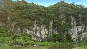 Κινήσεις κηφήνων αργά από τη λίμνη στον απότομο δύσκολο απότομο βράχο με τα δέντρα απόθεμα βίντεο