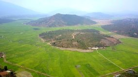 Κινήσεις κηφήνων προς το λόφο δασονομίας μεταξύ των τομέων ρυζιού απόθεμα βίντεο