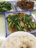 Κινεζικά απλά γεύματα Στοκ Εικόνα