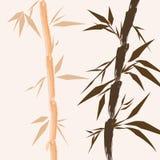 κινεζικά δέντρα σχεδίου μπαμπού ελεύθερη απεικόνιση δικαιώματος