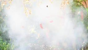 Κινεζικά κόκκινα firecrackers που κρεμούν με τα δέντρα που εκρήγνυνται έχουν έναν καπνό απόθεμα βίντεο