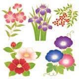 Κινεζικά λουλούδια ελεύθερη απεικόνιση δικαιώματος