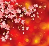 Κινεζικά νέα λουλούδια έτους ελεύθερη απεικόνιση δικαιώματος
