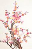 κινεζικά λουλούδια ανθών που χρωματίζουν το δαμάσκηνο Στοκ Φωτογραφία