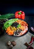 Κινεζικά τρόφιμα και κινεζικά νότια κινεζικά τρόφιμα νουντλς στοκ εικόνα