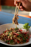 Κινεζικά τρόφιμα Στοκ Εικόνες
