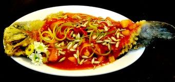 κινεζικά ψάρια πιάτων Στοκ εικόνα με δικαίωμα ελεύθερης χρήσης