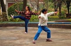 Κινεζικές γυναίκες που κάνουν tai chi στο πάρκο Στοκ Φωτογραφία