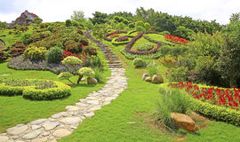 κινεζική άνοιξη κήπων Στοκ Φωτογραφία