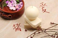 κινεζική έννοια Στοκ Εικόνα