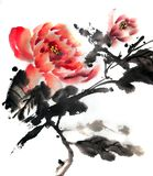 Κινεζική ή ιαπωνική ζωγραφική μελανιού των peony τριαντάφυλλων απεικόνιση αποθεμάτων