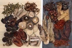 κινεζική βοτανική πιό πρόσφατη ιατρική προσωπικοτήτων superfood παραδοσιακή Στοκ εικόνα με δικαίωμα ελεύθερης χρήσης