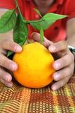 Κινεζική γλώσσα, πορτοκάλι με έναν κλαδίσκο και αρσενικός προσιτός φύλλων - παίρνοντας έτοιμος για την έννοια διακοπών Χριστουγέν Στοκ Φωτογραφίες