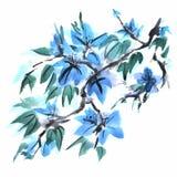 Κινεζική ζωγραφική των λουλουδιών διανυσματική απεικόνιση