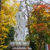 Κινεζική θεά στο ναό Zojoji στοκ φωτογραφίες