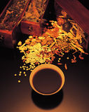 κινεζική ιατρική στοκ φωτογραφία με δικαίωμα ελεύθερης χρήσης