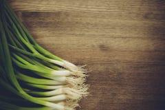 κινεζική κουζίνας γεύσεων σκόρδου άνοιξη κρεμμυδιών υλικών πιπεροριζών σημαντική Στοκ Φωτογραφία