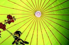 κινεζική ομπρέλα Στοκ Εικόνες