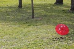 κινεζική ομπρέλα Στοκ εικόνες με δικαίωμα ελεύθερης χρήσης
